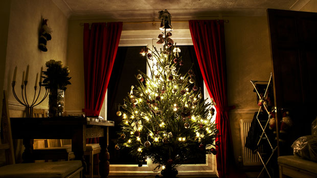 O Christmas Tree…Ye Real or Faux